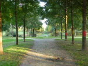 Le marais du Parc Balzac - Chloé Froger, 2013