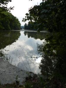 L'étang Saint Nicolas - Chloé Froger, 2014
